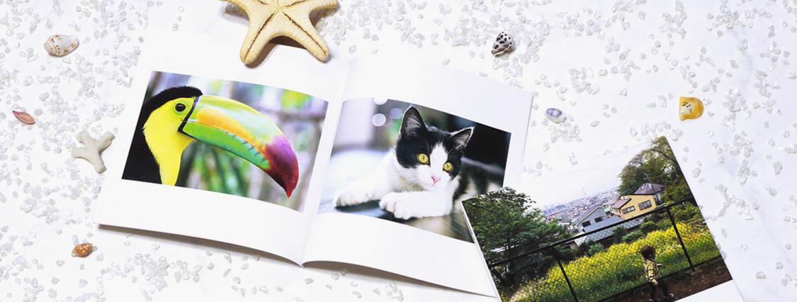 ペット写真をSceneフォトブックに
